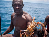 Lives, jobs and lobsters are protected in the Caribbean